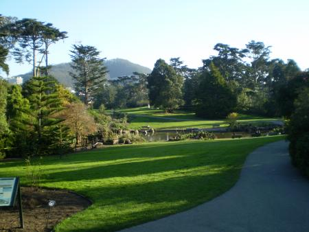 Image of a sidewalk in Golden Gate Park with grass and trees along the pathway